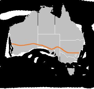 australie-b